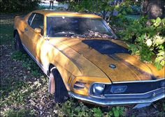 1970 Mustang Mach 1 Maintenance/restoration of old/vintage vehicles: the material for new cogs/casters/gears/pads could be cast polyamide which I (Cast polyamide) can produce. My contact: tatjana.alic@windowslive.com