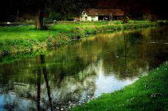 CONCHES EN OUCHE - Poney Village - village équestre - Ruisseau #equitation #cheval #poney #nature #conches #Normandie #paris #enfant #kids