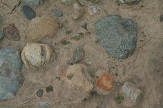 Rocks in a bed