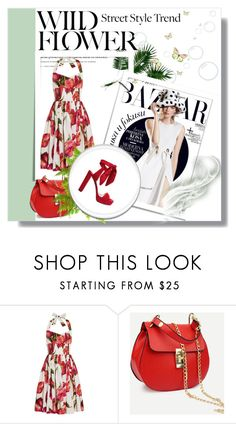 """""""Untitled #648"""" by missozlems ❤ liked on Polyvore featuring Dolce&Gabbana and Jimmy Choo"""