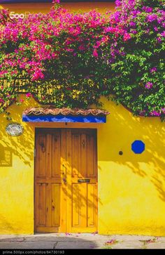 Exterior of a colorful house in Mexico City's Coyoacán neighborhood.
