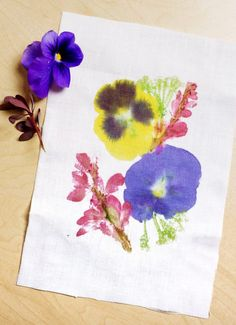 Hammered Flower Prints on Fabric are a great way to preserve some of that beautiful spring/summer flower color and make a great gift or card. Hammer away! Flower Petals, Silk Flowers, Fabric Flowers, Art Floral, Ground Cover Flowers, Shibori, Art For Kids, Crafts For Kids, Colors