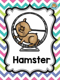 Farm Animals, Cute Animals, Hispanic Heritage, Learning The Alphabet, Letter A Crafts, New Class, Educational Activities, Classroom Decor, Cute Pictures