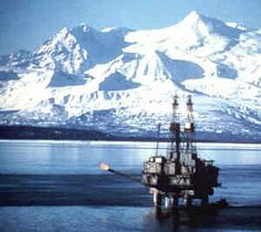 Petition against drilling in the arctic