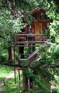 Wow a hotel made up of tree houses and zip lines, in Oregon. Very cool!!!  #beautifulworld