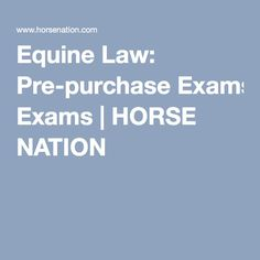 Equine Law: Pre-purchase Exams | HORSE NATION
