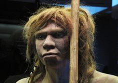 First mixed race (Neanderthal/Homo Sapiens) prehistoric teenager Prehistoric Period, Prehistoric Man, Art Rupestre, Genetics Traits, Anthropologie, Early Humans, Human Evolution, Ancient Mysteries, Prehistory