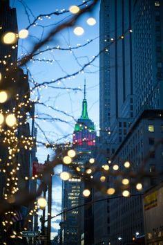 New York City Christmas Lights by Sara Ghedina