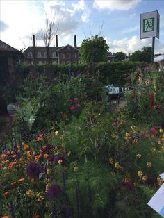 RHS-Chelsea-flower-show-2017-anewgarden-modern-garden-design-34.jpg (2448×3264)