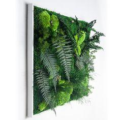 Cadre végétal stabilisé Väahto 60x60cm