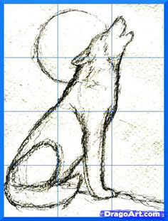 Realistic Drawing Techniques how to draw a howling wolf step 6 Wolf Drawing Easy, Coyote Drawing, Drawing Guide, Drawing Ideas, Wolf Howling Drawing, Drawing Drawing, Realistic Animal Drawings, 3d Drawings, Drawing Animals