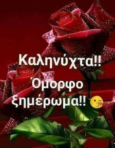 Good Night, Good Morning, Beautiful Pink Roses, Greek Language, Night Photos, Stephen Hawking, Greek Quotes, Best Quotes, Food And Drink