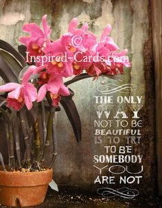 http://inspired-cards.com/store/products/the-only-way-to-be-beautiful/