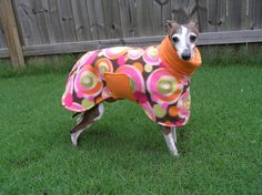If you live in a cold climate and have a dog with super short hair this Etsy site is for you. She has tons of fun polar fleece jackets, hoodies (called snoodies), pajamas, etc. Her dog models are all Italian Greyhounds but the sizes can be customized to fit any dog.