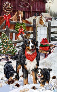 "New for 2011!  Bernese Mountain Dog Christmas Holiday Cards are 8 1/2"" x 5 1/2"" and come in packages of 12 cards. One design per package. All designs include envelopes, your personal message, and choice of greeting. Select the inside greeting of your choice from the menu below.Add your personal message to the Comments box during checkout."
