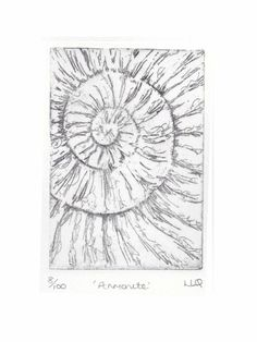 Etching no.8 of an ammonite fossil in an edition of 100 £30.00