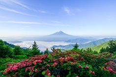 Spring of mountain Photo by Takashi   — National Geographic Your Shot