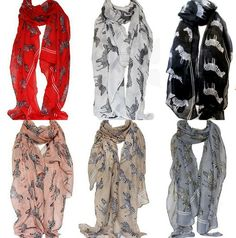 This can also happen due to different screen resolutions. Pashmina Scarf, Zebra Print, Alexander Mcqueen Scarf, Harem Pants, Scarves, Resolutions, Shawls, Shopping, Beautiful