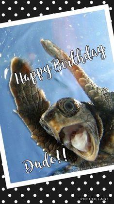 boy first birthday Funny Happy Birthday Messages, Happy Birthday Celebration, Happy Birthday Pictures, Singing Happy Birthday, Happy Birthday Quotes, Happy Birthday Greetings, Boy First Birthday, Humor Birthday, Birthday Blessings