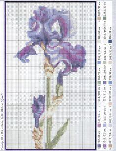 Gallery.ru / Фото #89 - разные цветочные схемы - irisha-ira