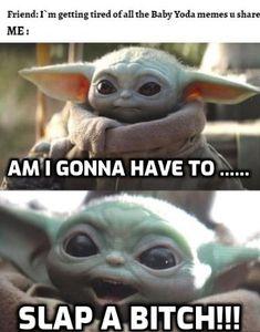 Funny Texts Jokes, Stupid Funny Memes, Hilarious, Yoda Images, Funny Images, Funny Pictures, Yoda Funny, Yoda Meme, Yoda Gif