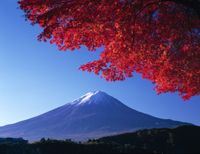 Japan, aka THE MOTHERLAND, where I was conceived but have never really visited. one day one day...
