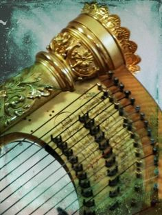 This reminds me of the top of my sister's harp :)