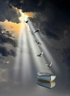 Souls landing in a mythical barque Amazing Photography, Landscape Photography, Nature Photography, Beautiful World, Beautiful Images, Beautiful Sunset, Beautiful Scenery, Beautiful Things, Cool Pictures