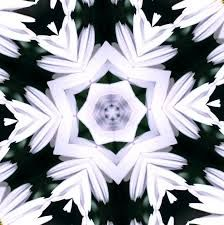 kaleidoscope black - Google-søgning