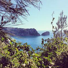 ¿Hace ONU # paseo porción la #naturaleza de #Xàbia ? #xabia365 #Granadella #ruta #Jávea #CostaBlanca #xabia #vacaciones #holidays #vacacionismo #hiking #route #nature #javea #comunidadvalenciana #mar #mediterrani #costa #sea #senderismo #senda #seaviews #isla #ambolo #descobridor #playa #cala #beach foto de @xabia_turisme