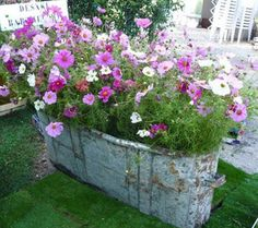 Container gardening is a fun way to add to the visual attraction of your home. You can use the terrific suggestions given here to start improving your garden or begin a new one today. Your garden is certain to bring you great satisfac Container Flowers, Container Plants, Container Gardening, Beautiful Gardens, Beautiful Flowers, Indoor Gardening Supplies, Garden Spaces, Garden Planters, Dream Garden