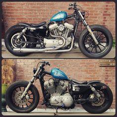 hins: XL883 @shakepiston #harleydavidson #Harley #xl883 #xl1200 #sportster #choppers #chopper ...