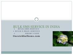 Ankit ppt  we provide latest bulk sms service in india at cheap rates .  our service is faster than other which save your time.we also provide bulk sms service in online.