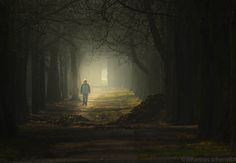 prater allee by Johannes Scherwitzl Lonely, Painting, Men, City, Painting Art, Paintings, Guys, Painted Canvas, Loneliness