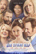 Big Stone Gap (2014)