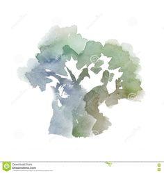 Afbeeldingsresultaat voor olivetree watercolors