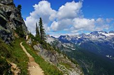 Trail to the top of Abbott Ridge, Glacier National Park, BC, Canada.