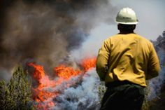 The Williams brush fire in Southern California could keep burning for a week, officials say. (via L.A. NOW)