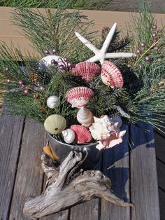 BEACH DECOR CHRISTMAS and winter shell by justbeachynow on Etsy, $51.00