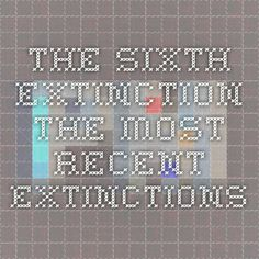 The Sixth Extinction - The Most Recent Extinctions