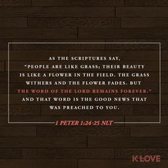 """K-LOVE Daily Verse: As the Scriptures say, """"People are like grass; their beauty is like a flower in the field. The grass withers and the flower fades. But the word of the Lord remains forever."""" And that word is the Good News that was preached to you. 1 Peter 1:24-25 NLT"""