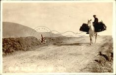 On the Bog Road, Achill County Mayo, Old Irish, Old Postcards, Ireland, Pictures, Photos, Irish, Drawings