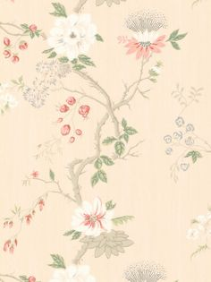Cole & Son - Collection of Flowers - India Paper 65-1005 VHR