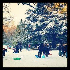 Acton Park Acton Park, Beautiful Park, Past, Dolores Park, Street View, Spaces, Green, Travel, Image