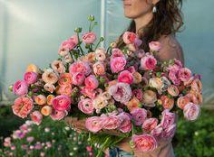 www.floramama.ca Bouquet, Pastel, Floral Wreath, Wreaths, Decor, Buttercup, Most Beautiful Flowers, June, Decoration