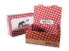 Transportverpackung S - Bild 2 - im online Verpackungsshop Boxximo kaufen. Unsere große Auswahl an Verpackungen bieten den richtigen Karton für jede Gelegenheit. Bei www.boxximo.de lässt sich jede Verpackung individuell gestalten ab einer Auflage von 1 Stück online bedrucken.   Transportverpackung S - Innenmaße: 245mm x 160mm x 95mm (Länge x Breite x Höhe)
