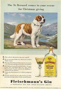 1940-St-Bernard-dog-art-Fleischmanns-Dry-Gin-print-ad-Vintage-Advertising