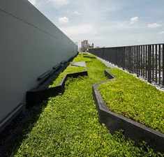 Onyx | Bangkok Thailand | Shma #landscapearchitecture #green #roof #roofgarden #rooftop #skyline #view #bangkok #grass #trees
