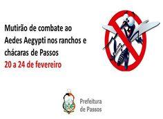 Prefeitura vai combater o Aedes em chácaras e ranchos http://www.passosmgonline.com/index.php/2014-01-22-23-07-47/geral/9998-prefeitura-vai-combater-o-aedes-em-chacaras-e-ranchos
