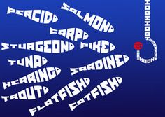 shoal fish typography
